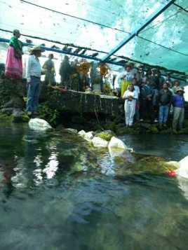 Ceremonia en el manantial Chihuahuita, en el municipio morelense de Zapata, amenazado por inmobiliarias