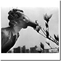 flor mascarilla